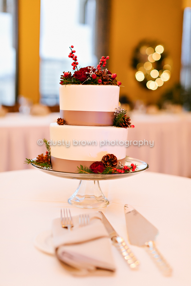 Grand Rapids Wedding Photographer-21